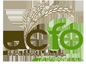 UCFO Logo